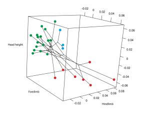 phylomorphospace_plot
